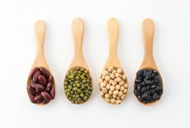 a list of proteins foods